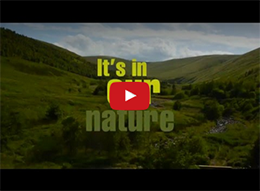 North Northumberland | It's in our nature