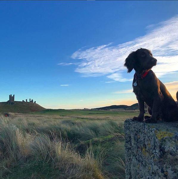 Explorers road to Berwick upon Tweed