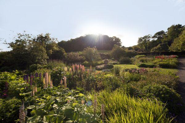 Wallington-Garden