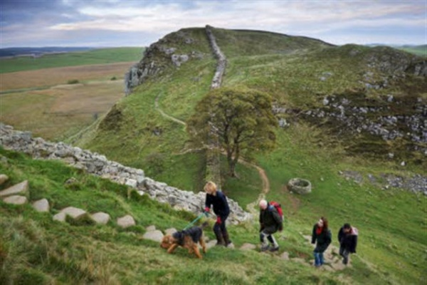 Celebrate the autumn countryside with a Great British Walk
