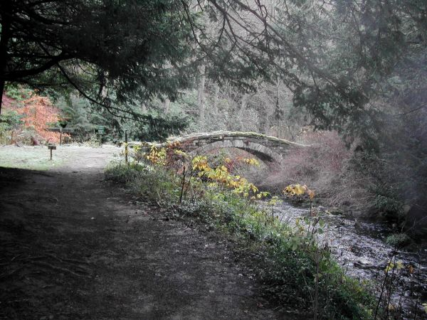 One of Cragside's original features being given a new lease of life