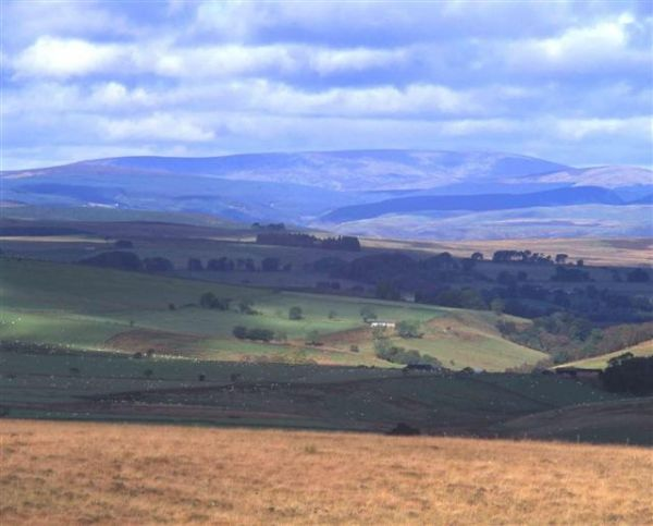 Five star rating for Northumberland National Park Authority website