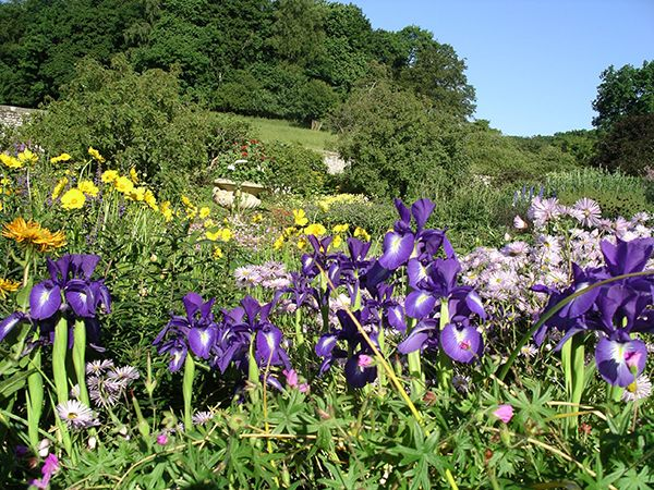Spring into a garden with the National Trust