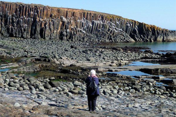 Summer Geo-walks on the Coast
