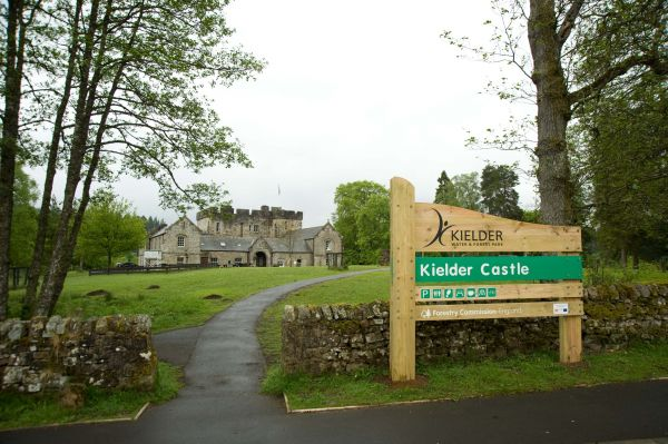 Art & Architecture fenced in at Kielder Castle