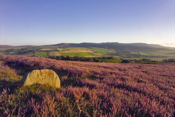 Northumberland National Park nominated  for National Park of The Year Award