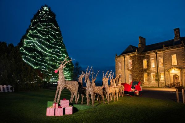 Wallington lights up the North East with Britain's most dazzling display of Christmas Trees