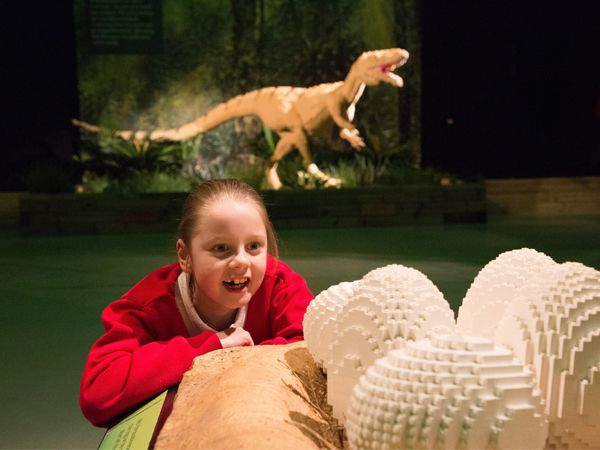Dinosaur Extinction Looming at Woodhorn