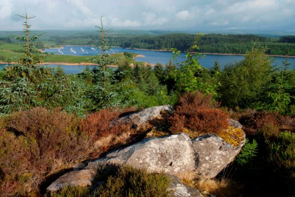 Be happy – not haunted – this half term at Kielder!