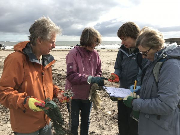 Litter surveyors wanted to count litter on beaches