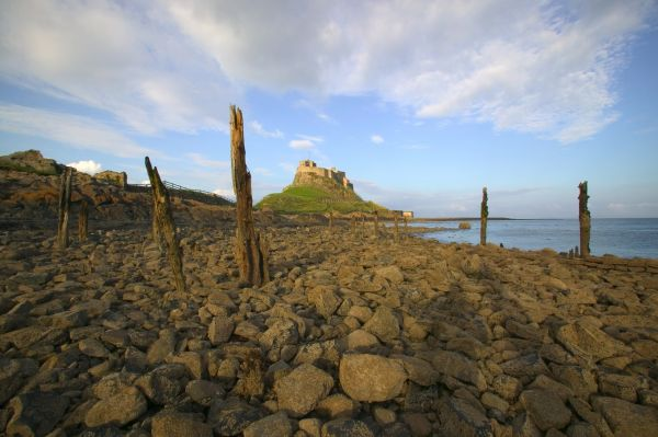 Diamond Celebrations for the Northumberland Coast AONB