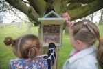 Helix Arts unveils free digital art trail for families in Stamfordham