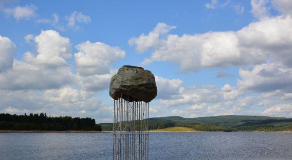 Dramatic new perch for lucky Kielder birds - Final lift-off for ''Plashetts Rising''!