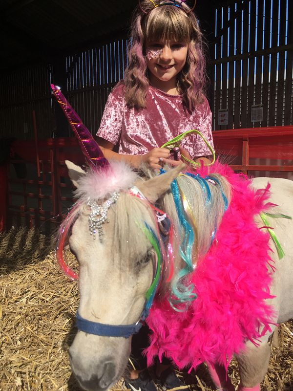Magical unicorns help deliver record-breaking August bank holiday weekend for Northumberland visitor attraction
