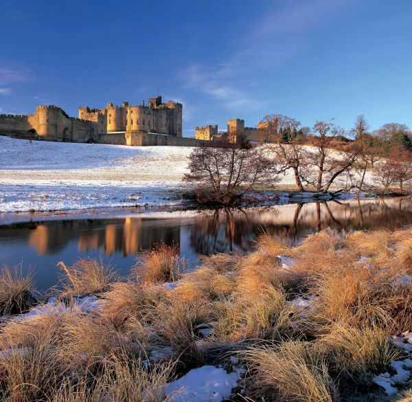 Enjoy a glittering, glitzy December and January at Alnwick Castle