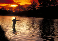River Tweed - Canoe Trail