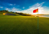 1hr Golf Lesson from £15