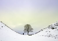 Northumberland in Winter